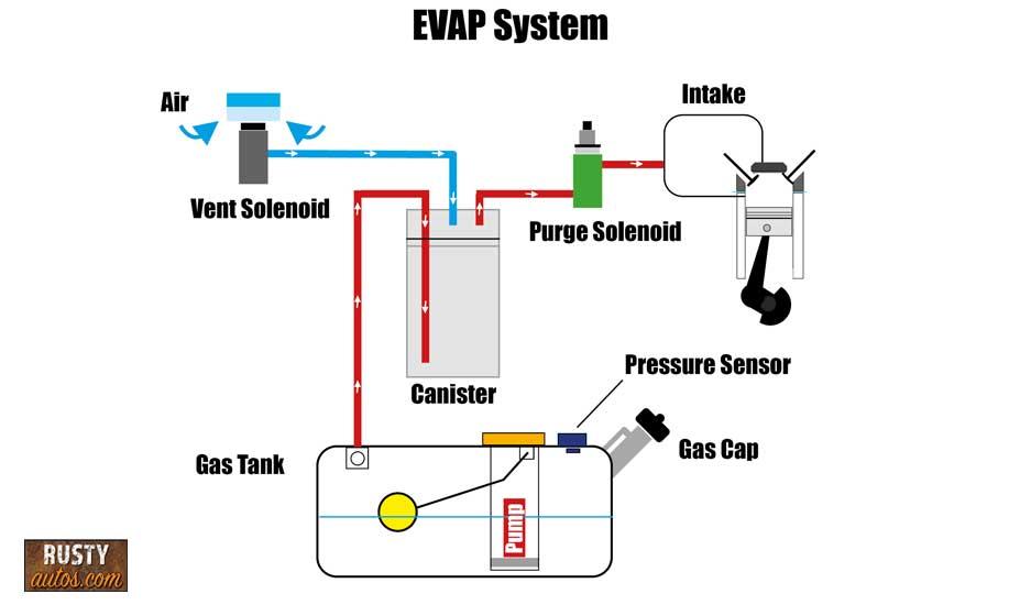 EVAP info-graphic